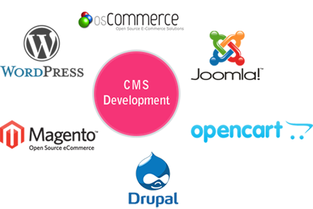 CMS Development Services Company