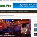 Travel Buzz Pro